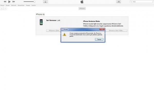 iphone 6s yazılım yükleme programı
